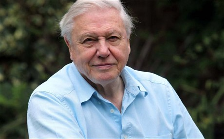 David Attenborough Home